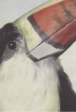 Poster met Toucan op Katoen 170x140cm