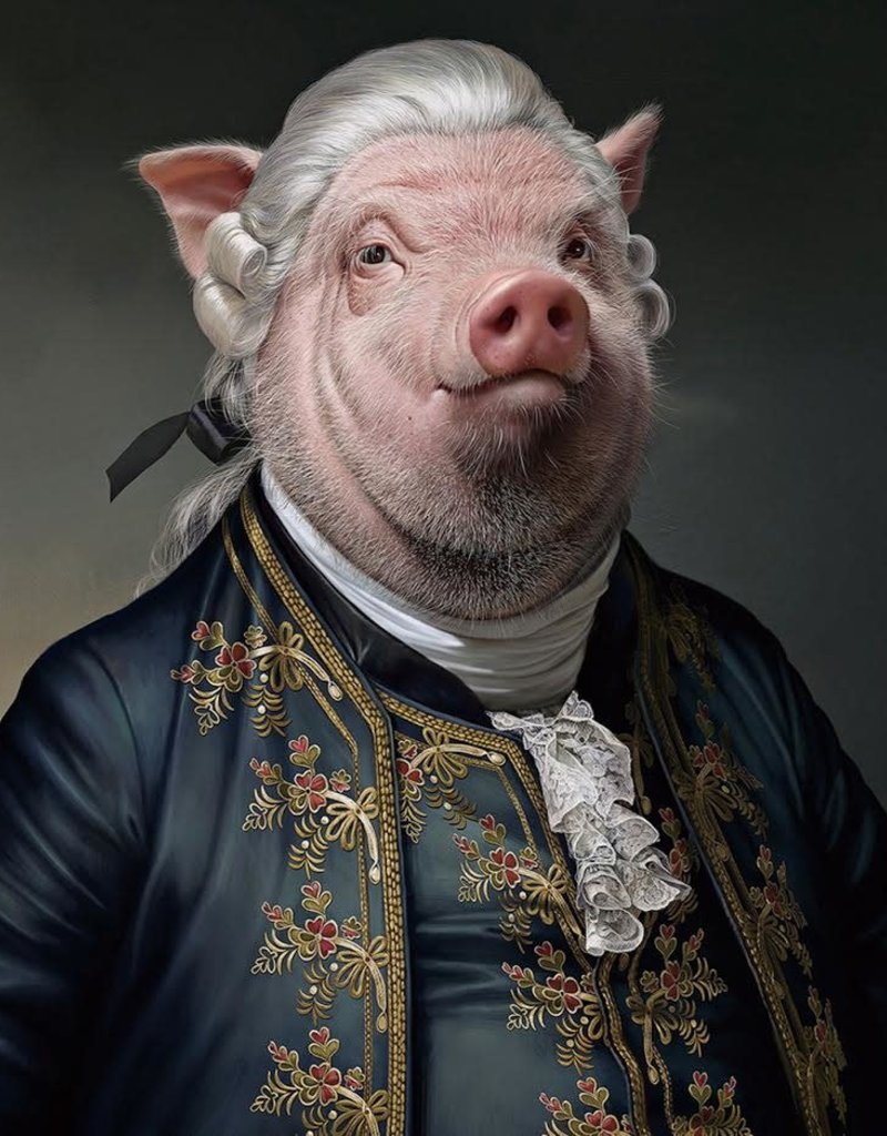 Glasschilderij Mr.Pig 80x80cm