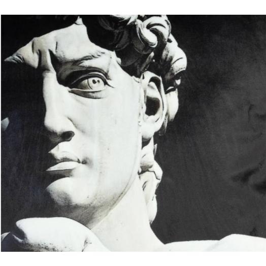 Kussen David van Michelangelo Zwart A 45x45cm Incl.binnenkussen