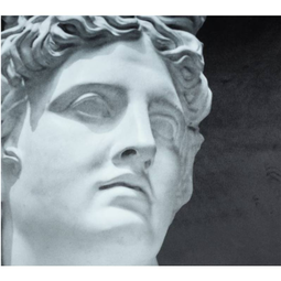 Kussen David van Michelangelo Bordeaux B  45x45cm Incl/binnenkussen