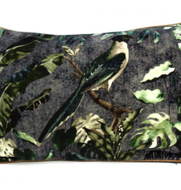 Imbarro Home & Fashion Imbarro Fluwelen Kussen Birdie Lorre incl.Binnenkussen 40x60cm