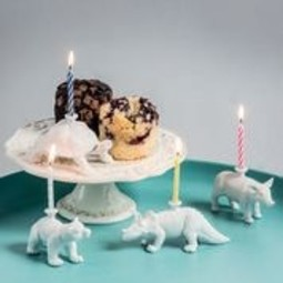 Donkey products Donkey Happy Zoo Day Dino incl.4 candles,porcelain