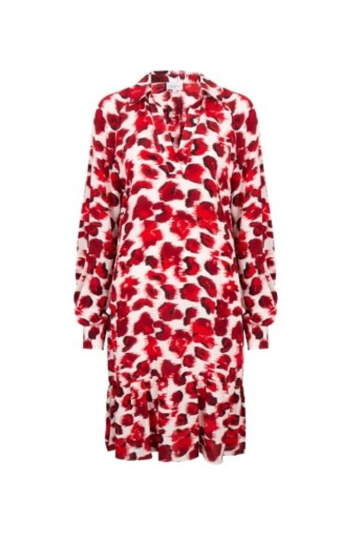 Jelson print dress
