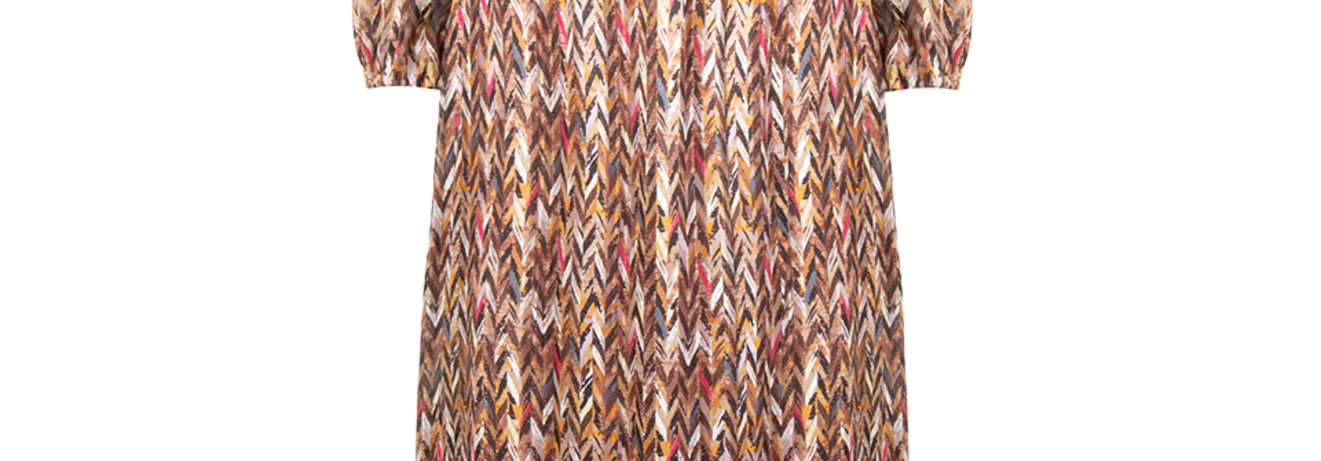 Bardon printed chevron dress