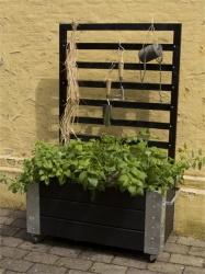 Plantenbak PLUS Cubic rechthoekig op wieltjes met klimplantenrek