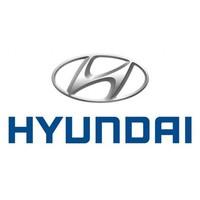 Câbles et points de charge pour VE de Hyundai
