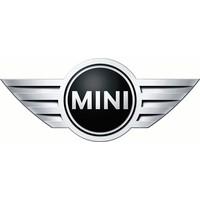 Laadkabels en laadpalen voor Mini EV's