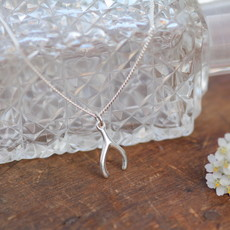 MADISON Silver Wishbone Necklace