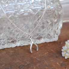 Silver Wishbone Necklace