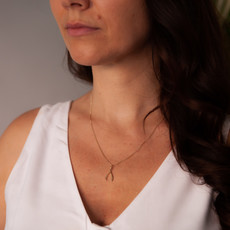 Joulberry Gold Wishbone Necklace