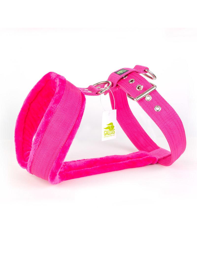 Gallus Gallus tuig Pink