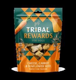 Tribal Koekjes  Kaas, Wortel en Zonnenbloempitten