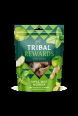 Tribal Koekjes Appel, Munt en Gember 125 gram