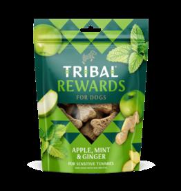 Tribal Koekjes Appel, Munt en Gember
