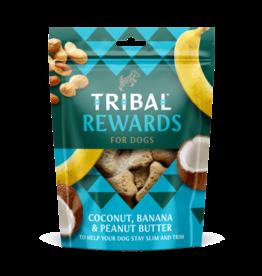 Tribal Koekjes Kokosnoot, Banaan & Pindakaas