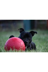 Jolly Jolly Soccer Ball