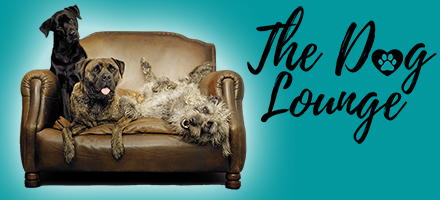 The Dog Lounge