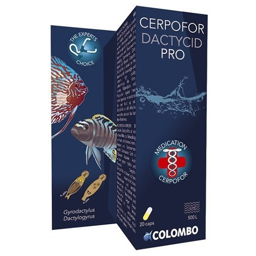 Colombo Colombo Cerpofor Dactycid PRO 20 Capsules