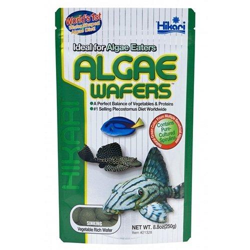 Hikari / Saki Hikari Hikari Algae Wafers 40 gram