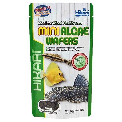 Hikari / Saki Hikari Hikari Mini Algae Wafers 22 gram