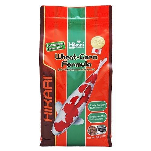 Hikari / Saki Hikari Hikari Wheat Germ Formula Large 2 Kg