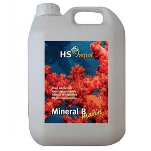HS Aqua Hs Aqua Marin Mineral B 2500 ML