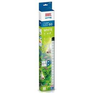 Juwel Juwel Novolux LED White 60 voor Aquarium Primo 60/70 8 Watt