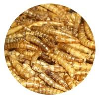 Meelwormen 5 ltr