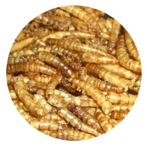 Natuurvoer Meelwormen 5 ltr