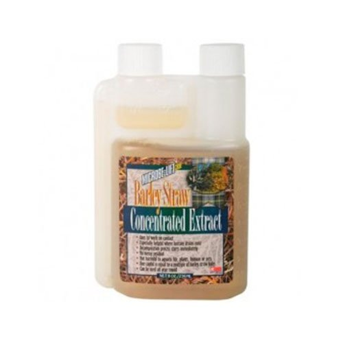 Microbe Lift Microbe Lift - Barley Straw Extract 250 ml