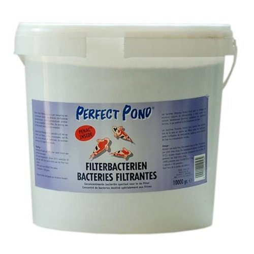 Perfect Pond Perfect Pond Filterbacteriën 10 KG