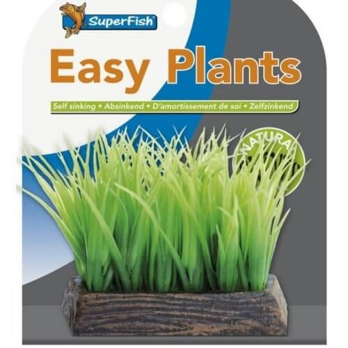 Superfish Superfish  easy plants voorgrond 6 cm nr 2