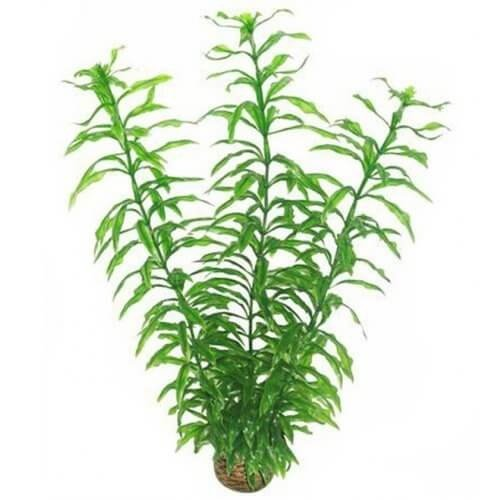 Superfish Superfish easy plants hoog 30 cm nr 2