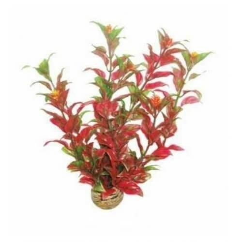 Superfish Superfish easy plants middel 20 cm nr 6