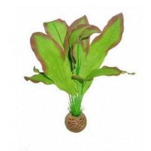 Superfish Superfish easy plants middel 20 cm nr 9 zijde