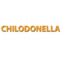 Chilodonella