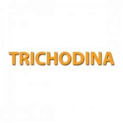 Trichodina