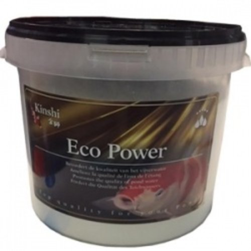 Kinshi Eco Power