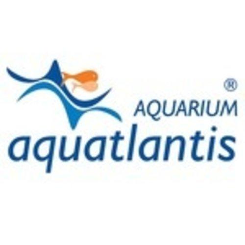 Aquatlantis | Filtermateriaal voor Aquariumfilters
