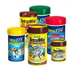 Tetra | Aquarium Visvoer