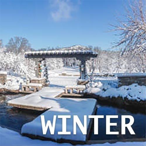 Winter Koivoer