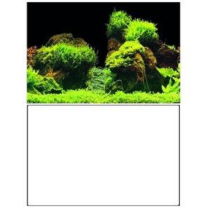 Superfish Superfish Deco Poster E2 60x49 cm