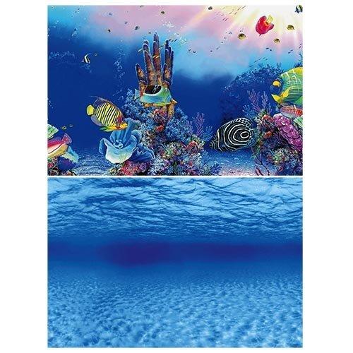 Superfish Superfish Deco Poster F2 60x49 cm