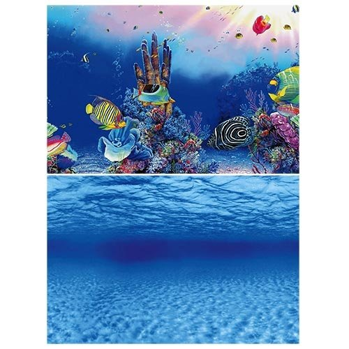 Superfish Superfish Deco Poster F1 60x30 cm