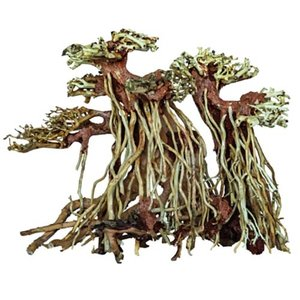 Superfish Superfish Bonsai Twin Tree Small
