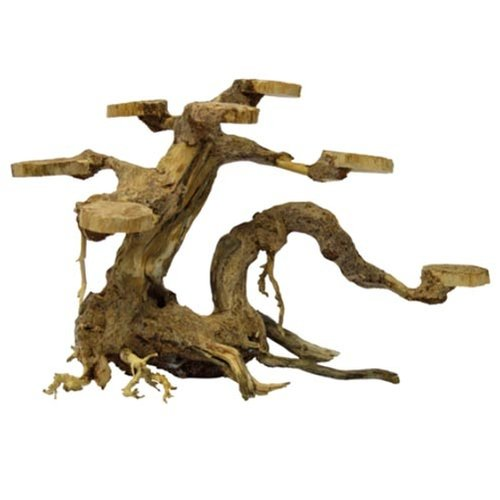 Superfish Superfish Bonsai Planter Small