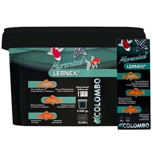 Colombo Lernex