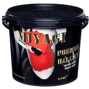 Miyagi Miyagi Premier Balance 2 kg