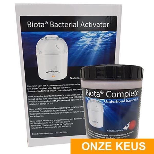 Bacterial Biota