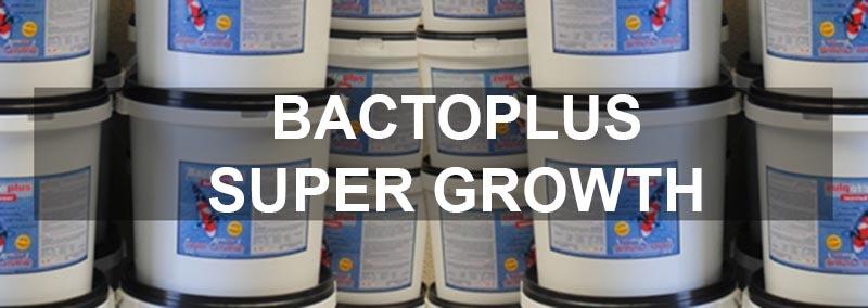 koivoer-bactoplus-super-growth-kopen